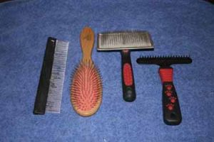 Comb, pin brush, slicker and rake.