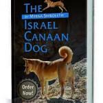 Israel Canaan Dog by Myrna Shiboleth